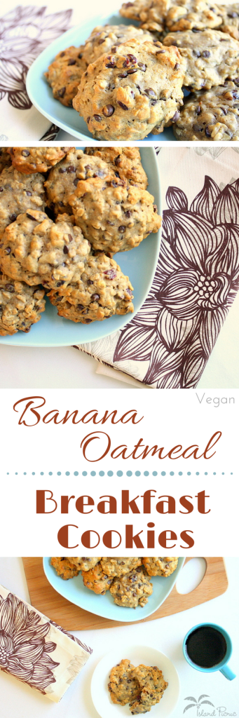 Banana Oatmeal Breakfast Cookies -- Healthy & Vegan, too!