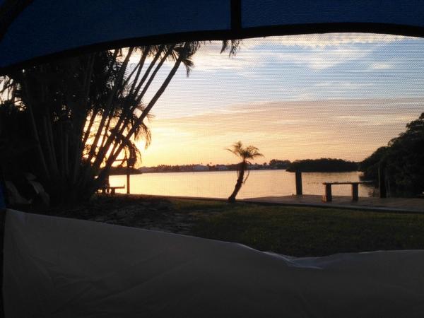 Backyard Camping - Morning view