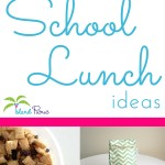 Allergy Friendly School Lunch Ideas Roundup
